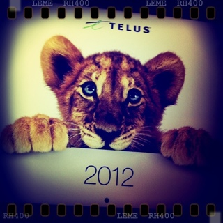 Arrived: Free 2012 Telus Calendar